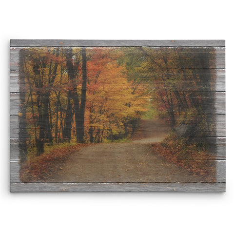Autumn Road Fall Canvas Picture