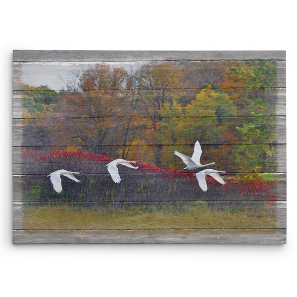 Autumn Flight Canvas Print
