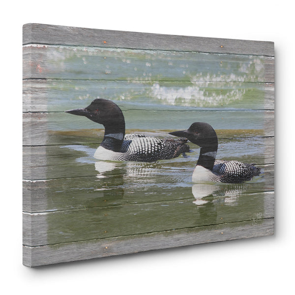 Loons on the Lake Canvas Print