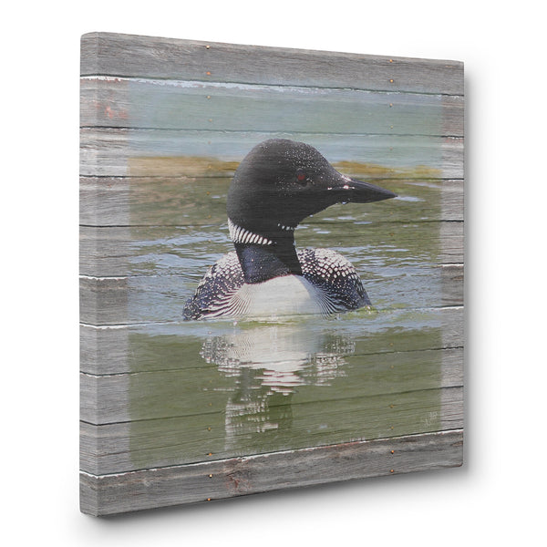 Afternoon Swim - Loon Lake Canvas Print