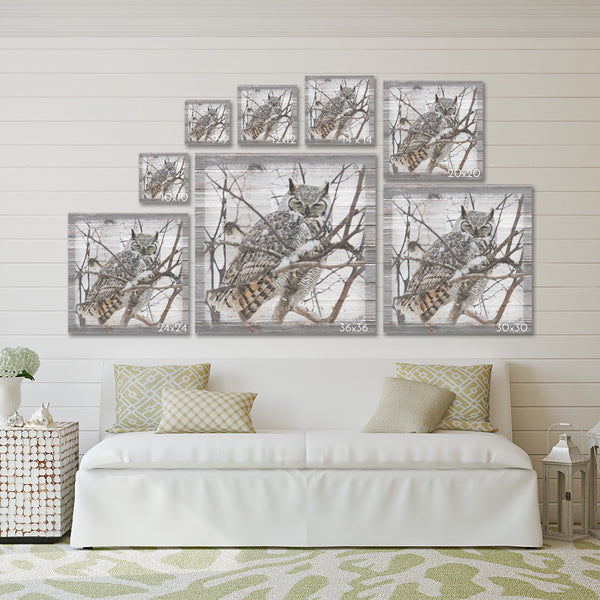Discovered - Deer in Woods Canvas Print