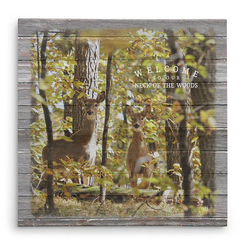 Welcome To Our Neck Of The Woods - Twin Whitetail Deer Print