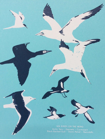 'Sea Birds on the Wing' by Pirrip Press