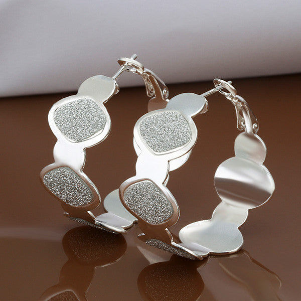 Frosted Hoop Silver Earring