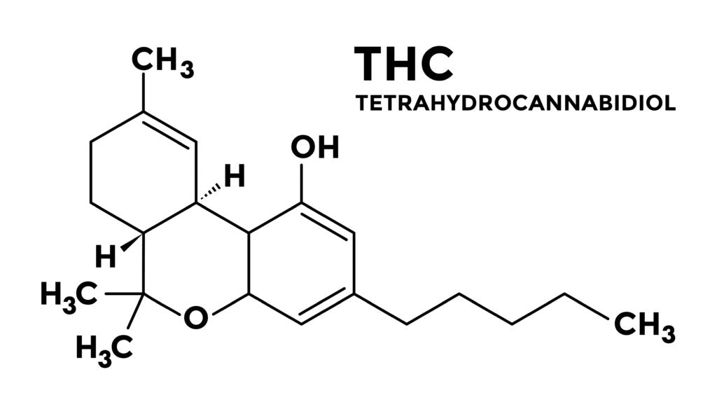 Does CBD Oil Have THC?