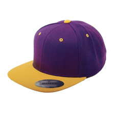 Purple & Yellow Snapback