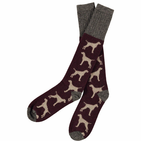 men's lambswool brown dog knee socks