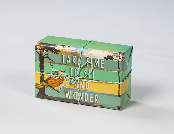 Sit and Wonder Soap