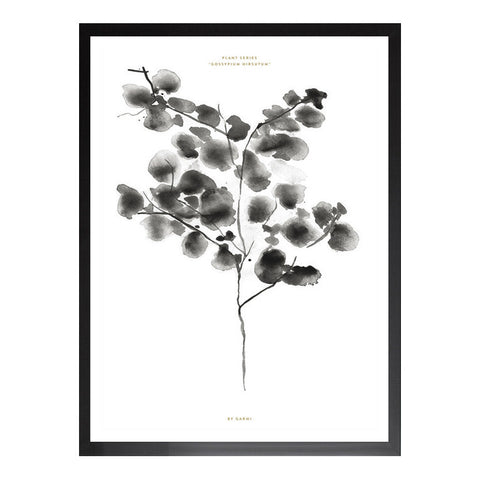 Cotton Plant by Garmi