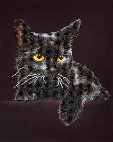 Diamond Dotz ~Midnight Cat - Hands Craft Store