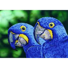 Diamond Dotz ~ Blue Hyacinth Macaws - Hands Craft Store