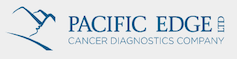 Pacific Edge Logo, Stepping Stone Career Support, New Zealand