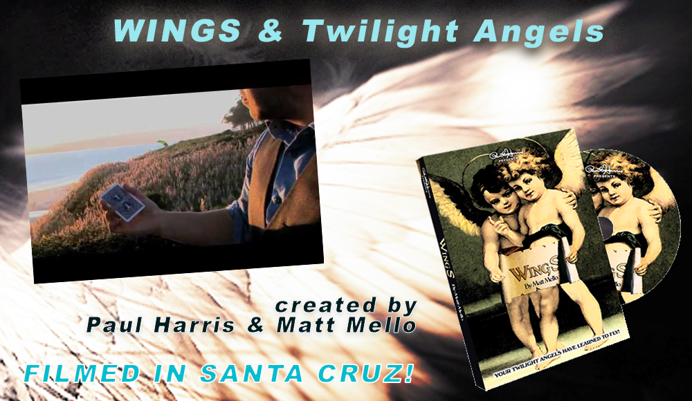 WINGS and Twilight Angels by Matt Mello and Paul Harris