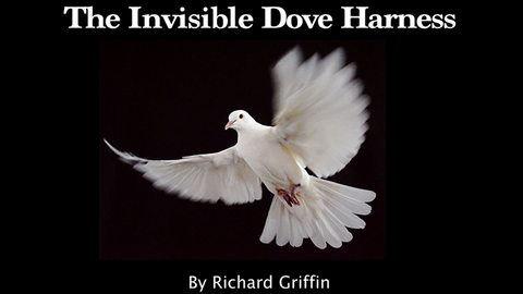 Invisible Dove Harness by Richard Griffin - Trick