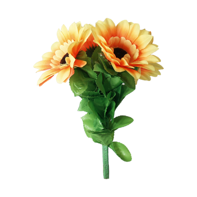 Amazing Split Sunflower by Premium Magic - Trick