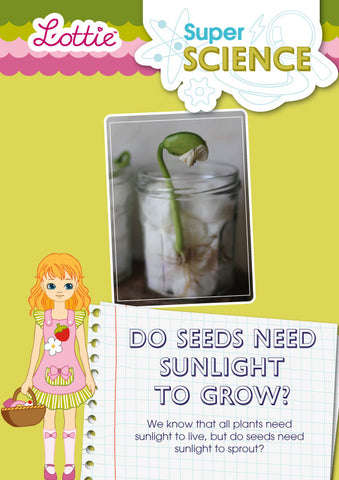 Do seeds need sunlight to grow? activity for kids
