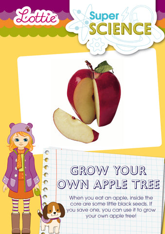 Grow your own apple tree activity for kids