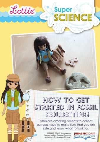 How to get started in fossil collecting factsheet for kids