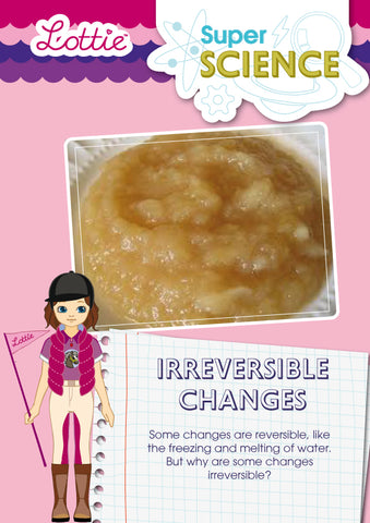 Irreversible changes activity for kids