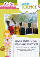 Make your own coloured flowers activity for kids