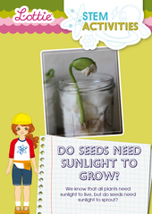 Seeds sunlight to grow STEM Activity