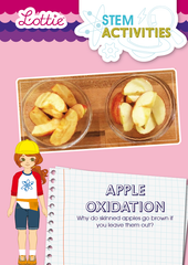 Apple Oxidation STEM Activity