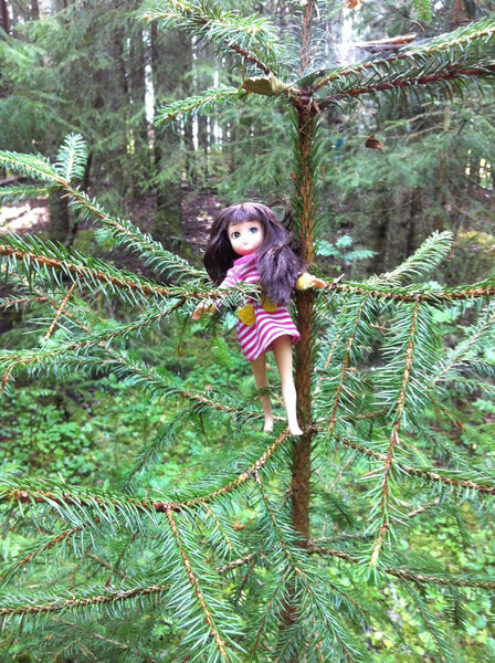 Where's Lottie? Climbing a tree in Dala Floda, Sweden