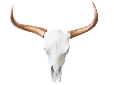 Bull Steer Skull Head Trophy With Horns - Wicked & XL!