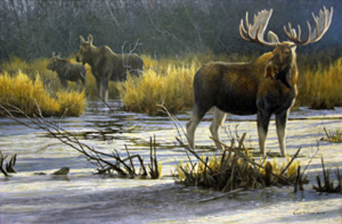 "Robert Bateman Print ""The Moose Family""