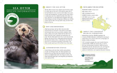 Sea Otter Adoption Kit|Trousse d'adoption – loutre de mer
