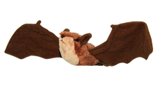 Little Brown Bat Adoption Kit | Trousse d'adoption – petite chauve-souris brune