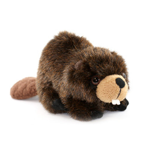 Beaver Adoption Kit|Trousse d'adoption – castor