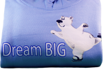 Youth 'Dream Big' Polar Bear Skating Hoodies