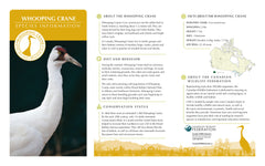 Whooping Crane Adoption Kit|Trousse d'adoption – grue blanche