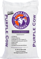 Purple Cow Activated