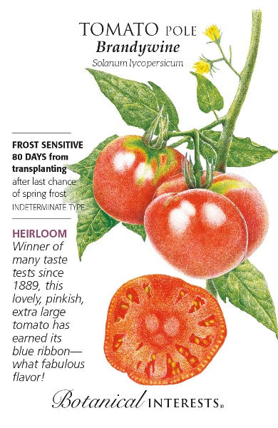 seed pack with drawing of red brandywine tomatoes on vine