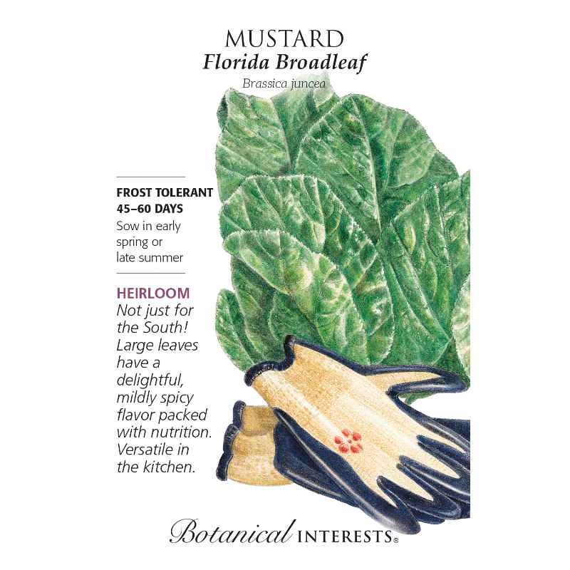 seed packet with spinach leaves and garden gloves