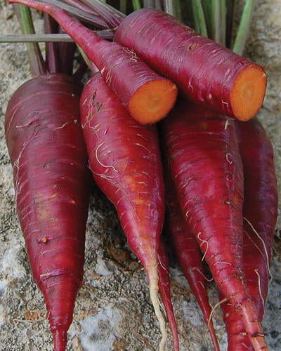 image of a bunch of carrots with bright red exterior, with two cut in half, showing the bright orange inside