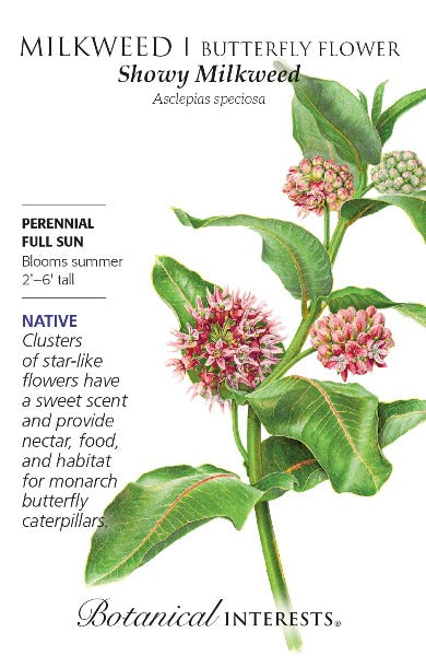 Showy Milkweed/Butterfly Flower Seeds