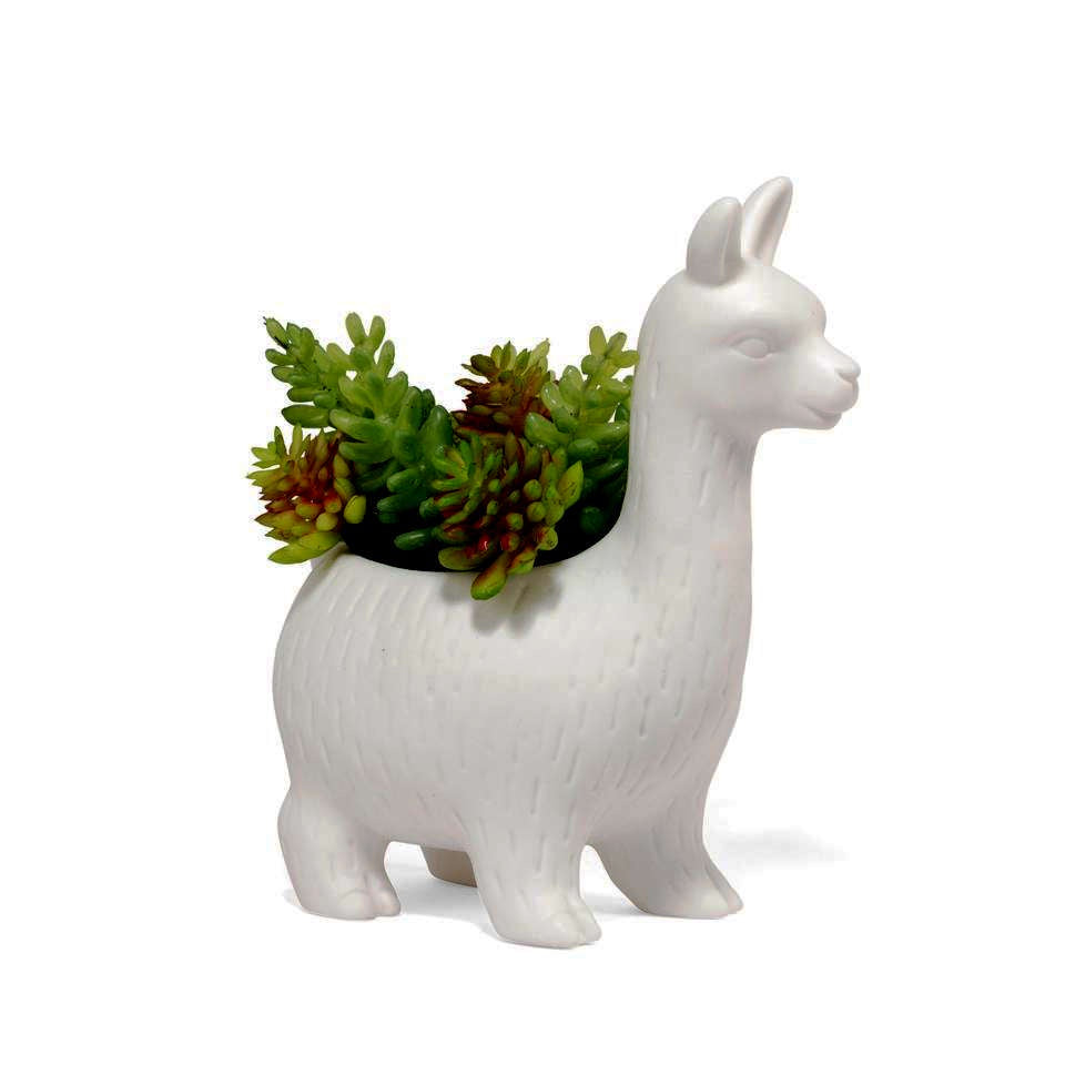 white ceramic llama planter planted with succulents