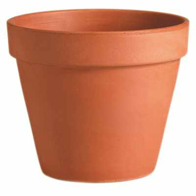 traditional flower pot in terra cotta clay