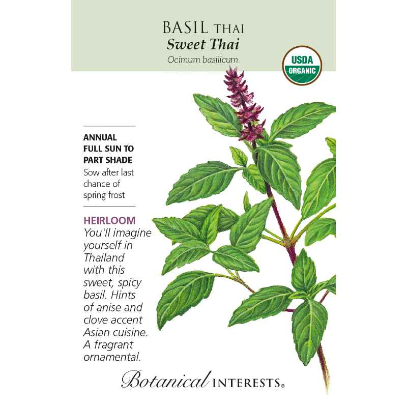 Seed pack with drawing of thai basil plant and description