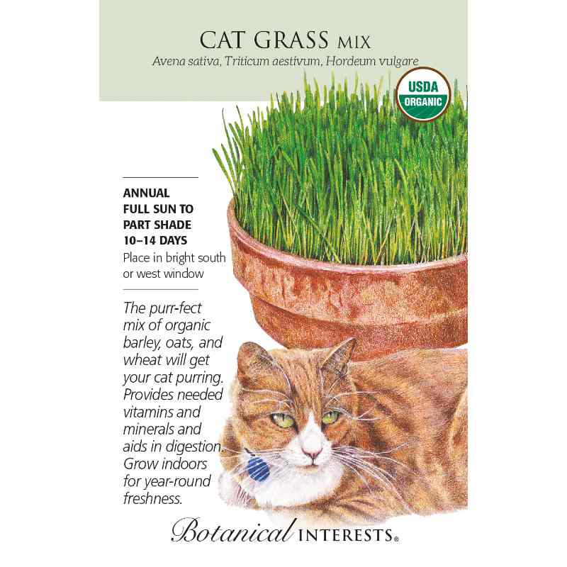 seed pack with drawing of a cat lying in front of a pot of cat grass