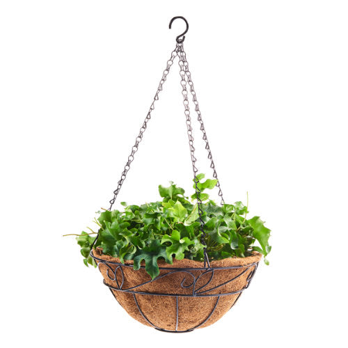 Iron Coco Hanging Basket