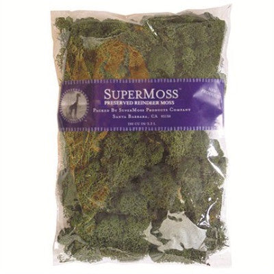 plastic bag with logo and name on purple label and green moss inside bag