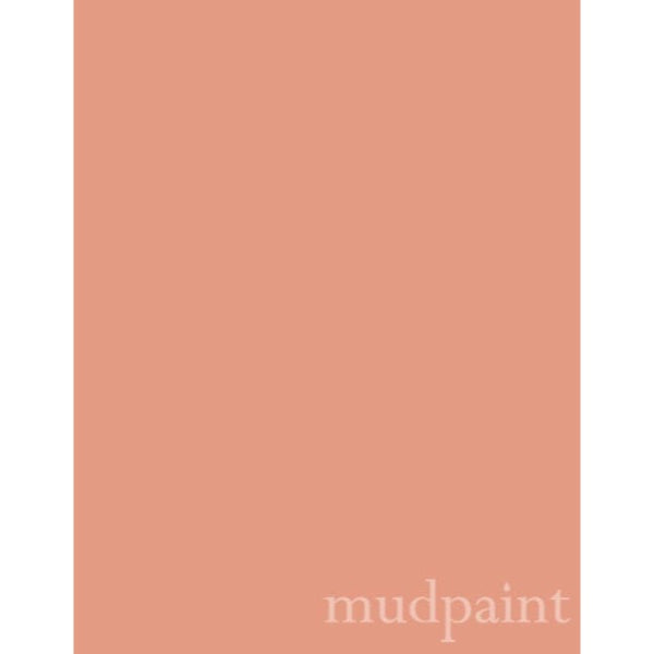 coral peach color paint chip with the word mudpaint in the lower right corner