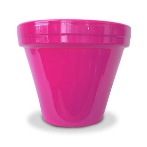 image of bright pink flower pot