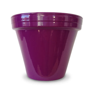 image of purple flower pot