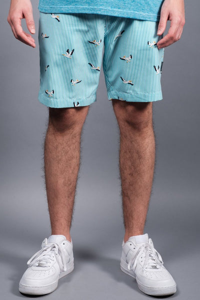 Bird Striped Volley Shorts
