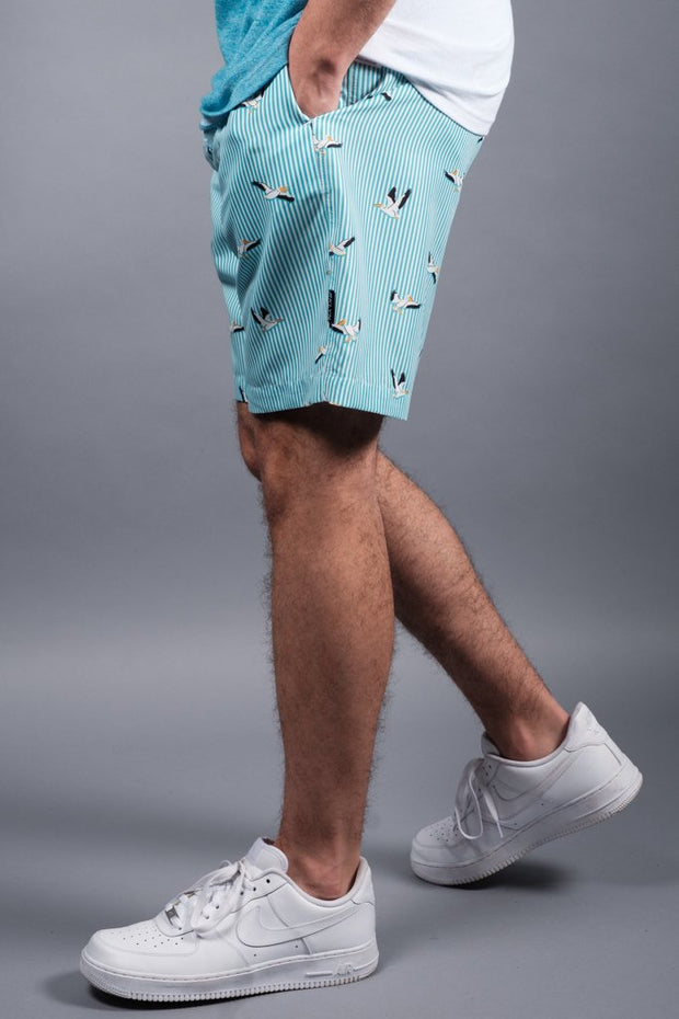 Bird Striped Volley Shorts for Men